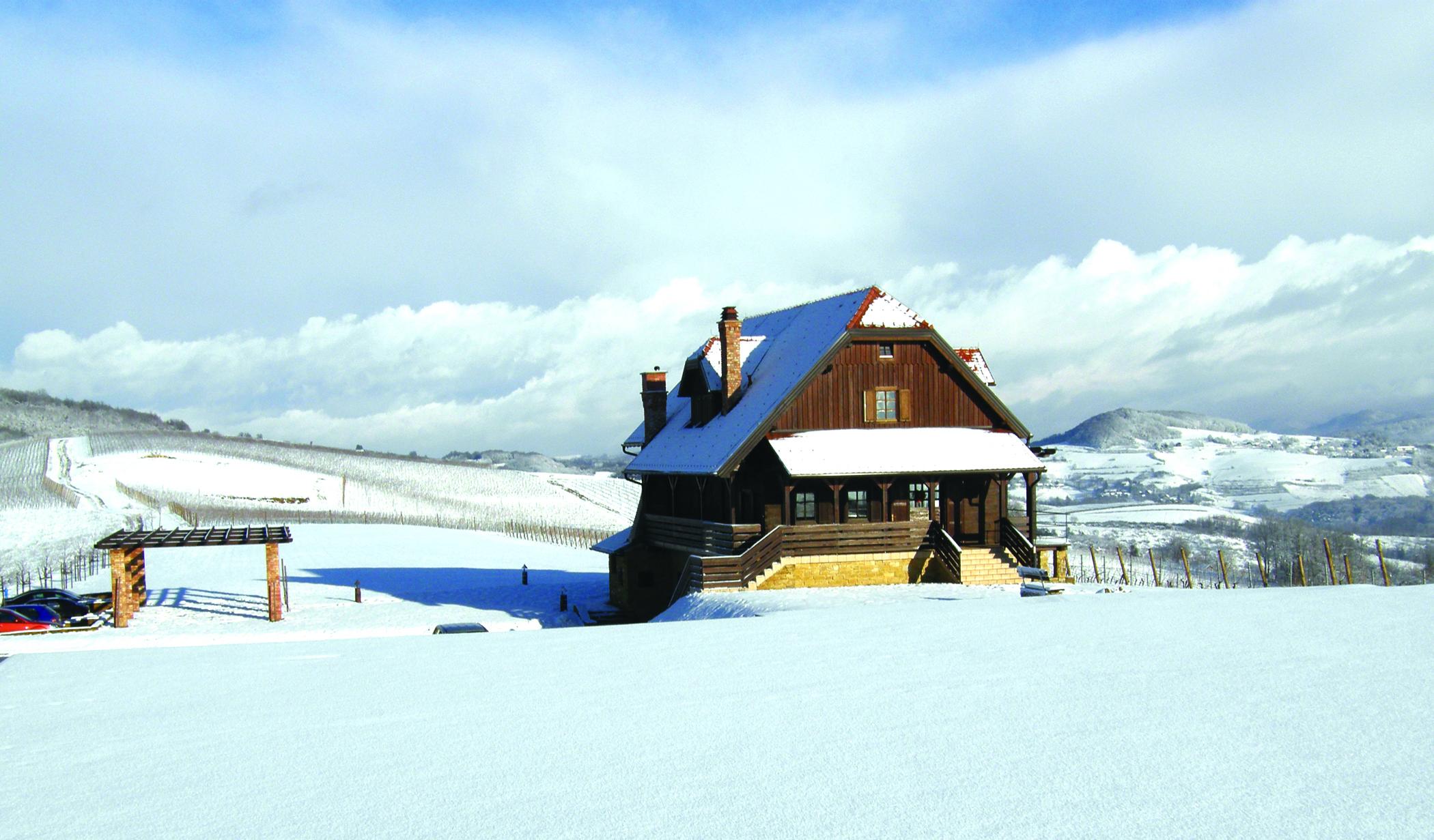klet Bolfan - zima